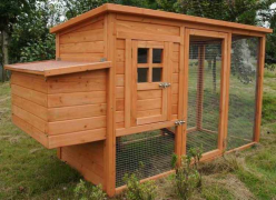 Chicken Coop Building Plans